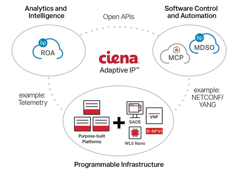 Ciena Adaptive IP solution diagram